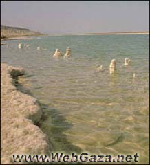Dead Sea - 405 meters below seallevel make the Dead Sea the lowest point on earth, which because of its high salt content makes it inhospitable to life...